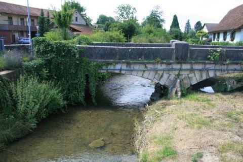 Der Fluss Surb bei Endingen AG